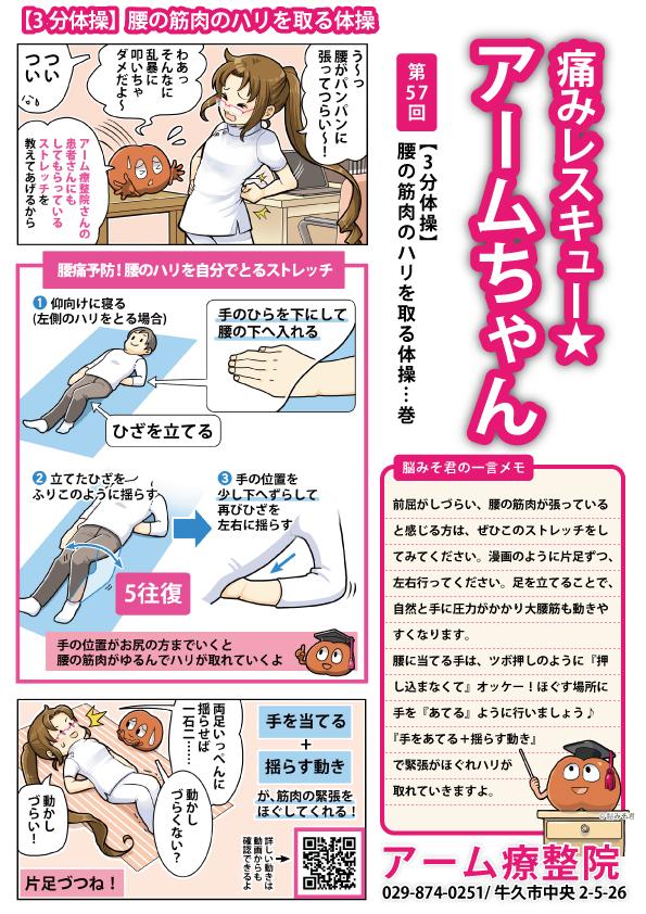 【3分体操】腰の筋肉の張りを取る体操